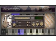 Kong Audio ChineeLiuQin