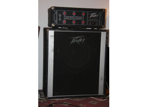 Peavey Century 120 Bass series