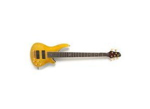 WSL Guitars Basse Glam & Proud 5