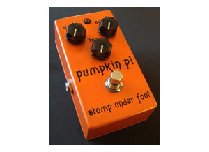 Stomp Under Foot Pumpkin Pi