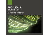 Applied Acoustics Systems Angelicals