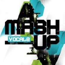 Sound To Sample MASH-UP VOCALS