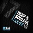 DJ Mixtools 17 - Deep And Soulful House 2