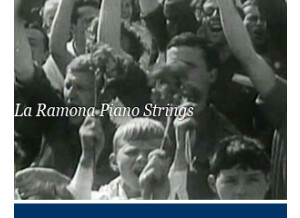 Detunized DTS028 - La Ramona Piano Strings
