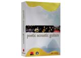 Best Service Poetic Acoustic Guitars