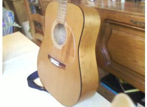 Nash Acoustic Guitar MV 40 PX
