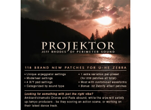 Perimeter Sound Arts Projektor