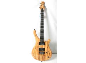 WSL Guitars The Beast