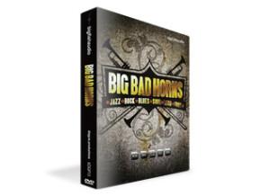 Big Fish Audio Big Bad Horns