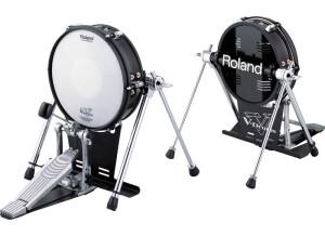 Roland KD-120
