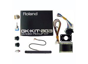 Roland GK-KIT-BG3