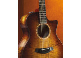 Taylor 2011 Fall Limited Edition Guitars