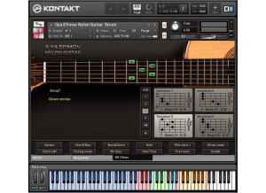 Ilya Efimov Sound Production Nylon Guitar