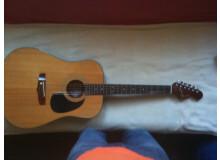Fender AG15-N