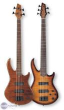 Godin BG-4 Bass