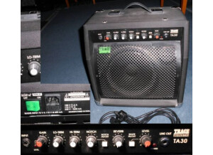 Trace Acoustic TA30