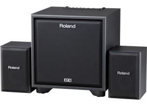 Roland CM-220