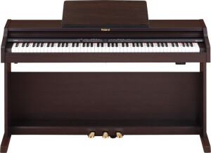Roland RP301R