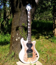 AMV Artist Luthier HYDRA Vinci
