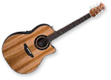 Ovation 2009 Collectors' Series