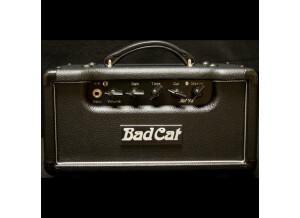 Bad Cat Lil 15