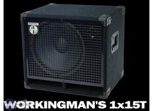 SWR Workingman's 1x15T