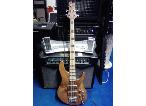 Luthier Combe Baïla 5