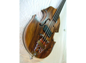 Pierre Martines Violina