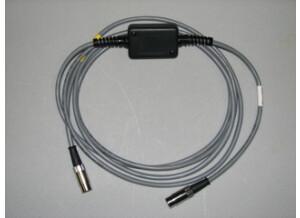 Rjm Music Technologies #AC-RRN-10 (cable Mesa-Boogie)