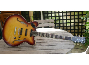 Hofner Guitars Verythin3 CT