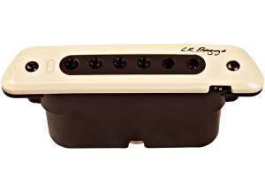 L.R. Baggs M80
