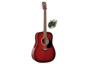 Art & Lutherie Spruce Quantum 1