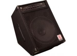 Eden Amplification E15
