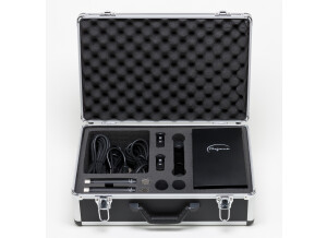 Mojave Audio MA-100SP