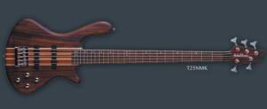 Washburn T25