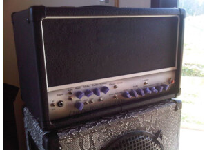 Tep's Amps Dirty Rocker 16 W