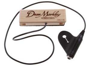 Dean Markley ProMag XM