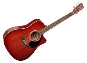 Art & Lutherie CW Spruce