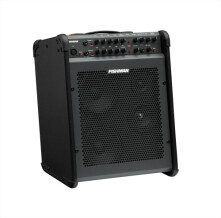 Fishman Loudbox Performer [2005-2011]