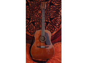 Melody Guitars Mod 500