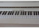 Farfisa Furstein