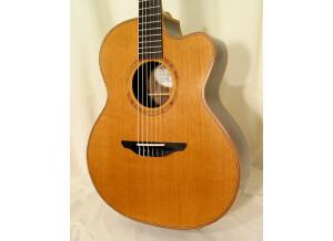Avalon Guitars A25J