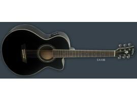 Washburn EA10