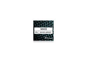 iZotope Voice