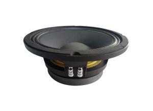 Audiophony SW10-250