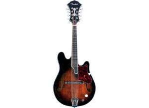 Fender Artist Design Electric Mandolin Robert Schmidt