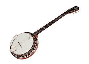 Deering Boston 6-String Banjo