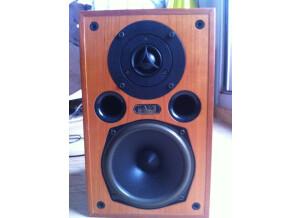 Acoustic Energy 100SE