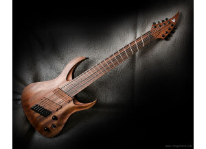 Ran Guitars Crusher (8 cordes) et Crusher FF8