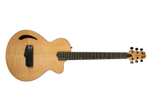Willcox Guitars Atlantis Flame Maple